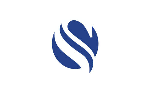 Channel S Logo